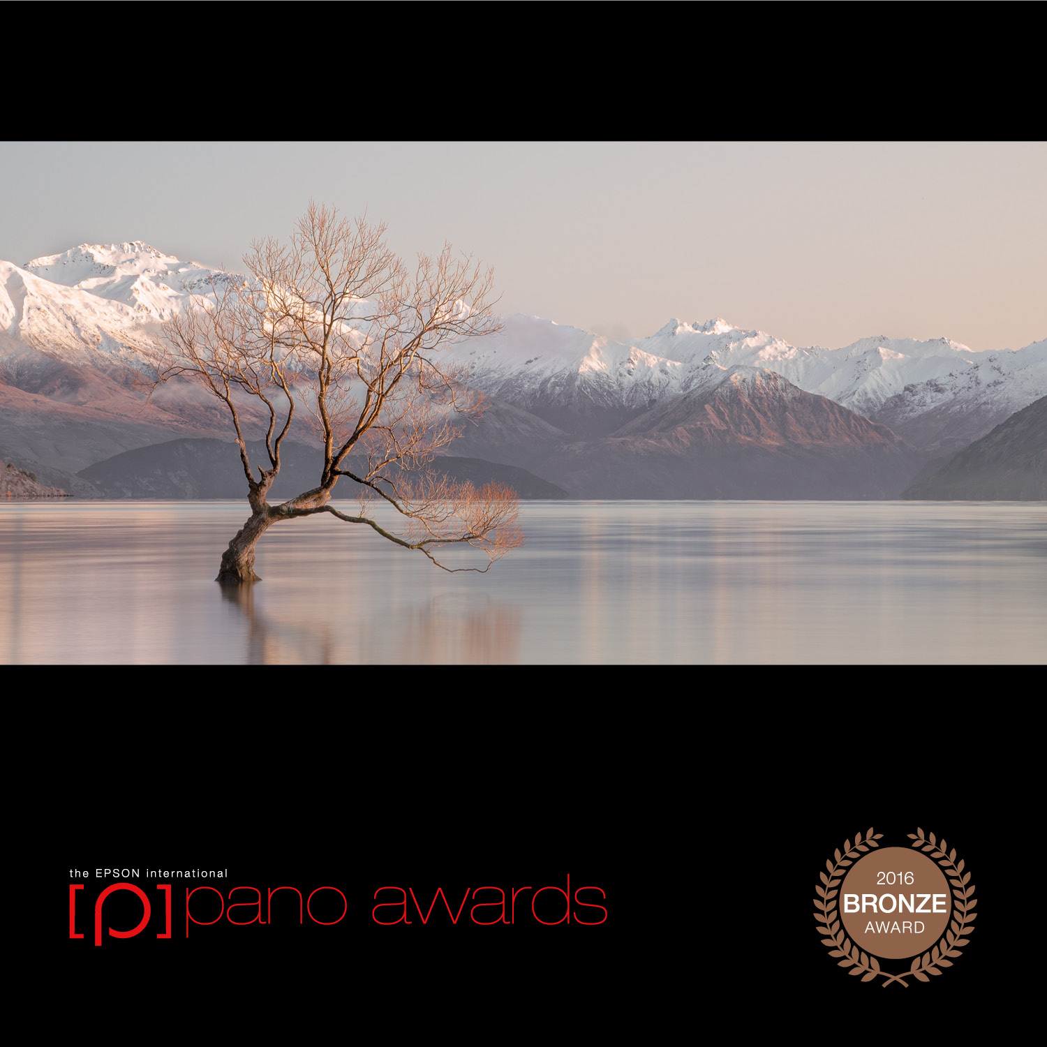 2016-Pano-Awards-Amateur-Bronze-439.jpg