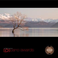 2016-Pano-Awards-Amateur-Bronze-439.jpg