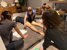 解剖学セミナー骨盤・下肢編