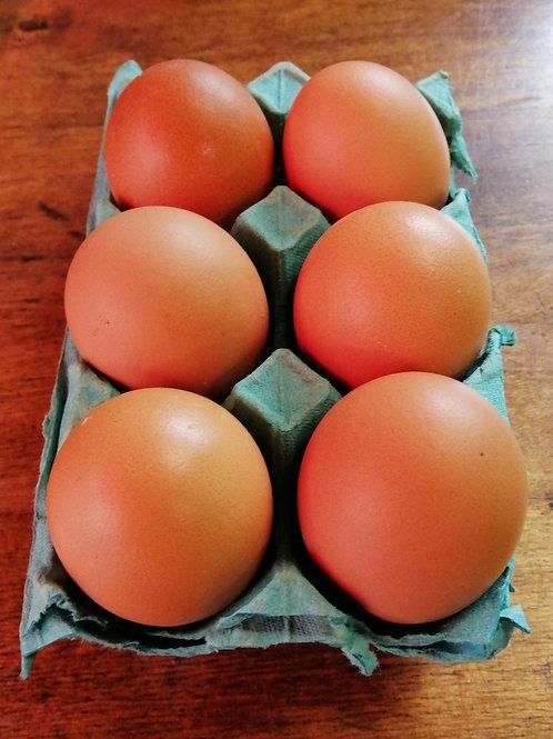 Free Range Organic Eggs - mixed size