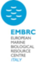 EMBRC_IT LogoP.jpg