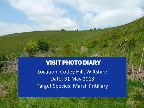 Cotley_Hill cover_31May13rspoplarr no al