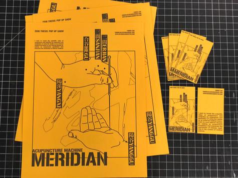 Meridian - Acupuncture Installation