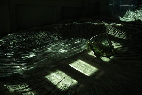 Planet Trilogy - 11th Shanghai Biennale