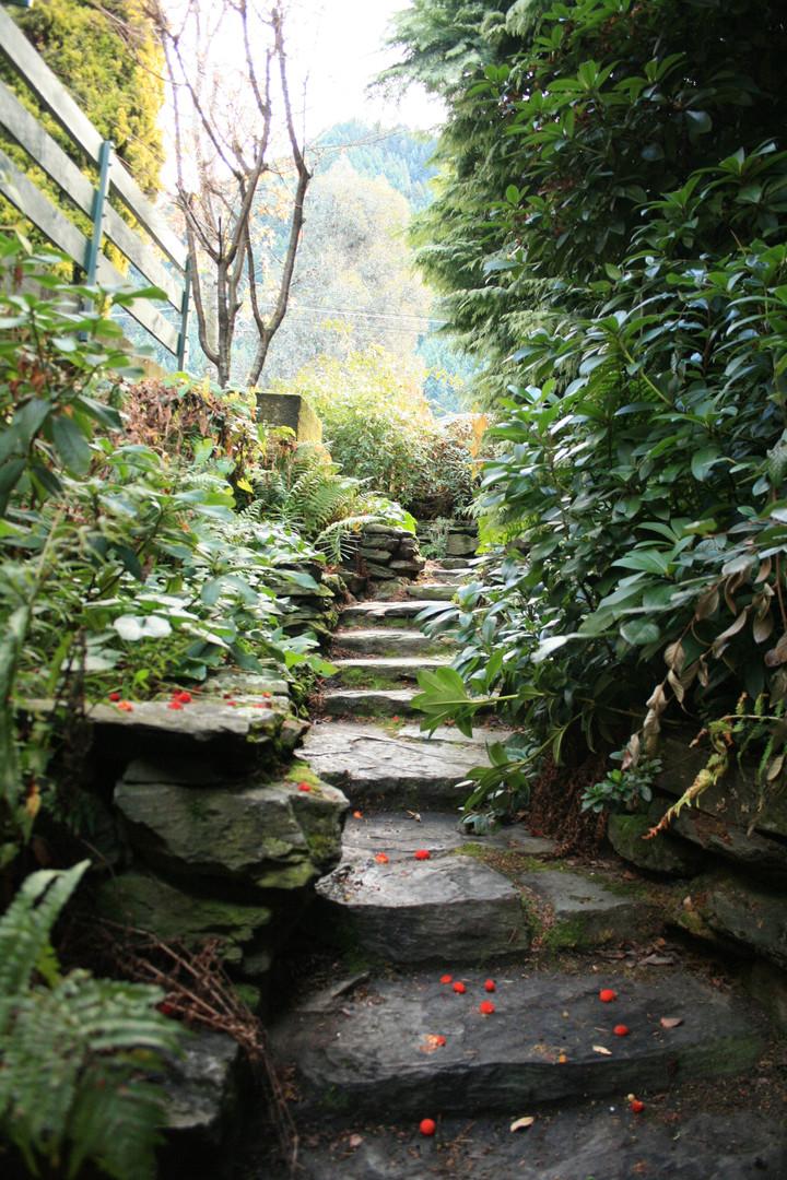 Garden Path .JPG