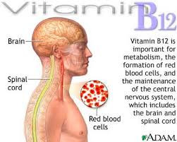 B 12 injections