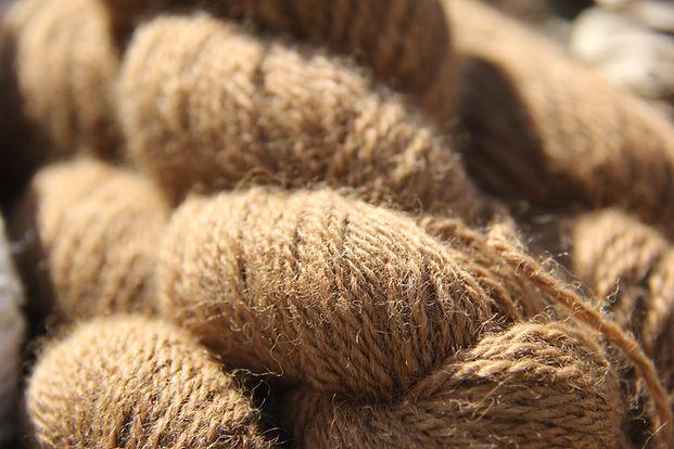 laine d'alpagas