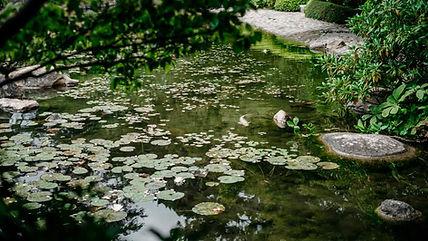 paris-photography-albert-kahn-museum-jap