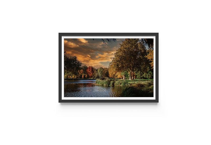 European golden autumn fine art print