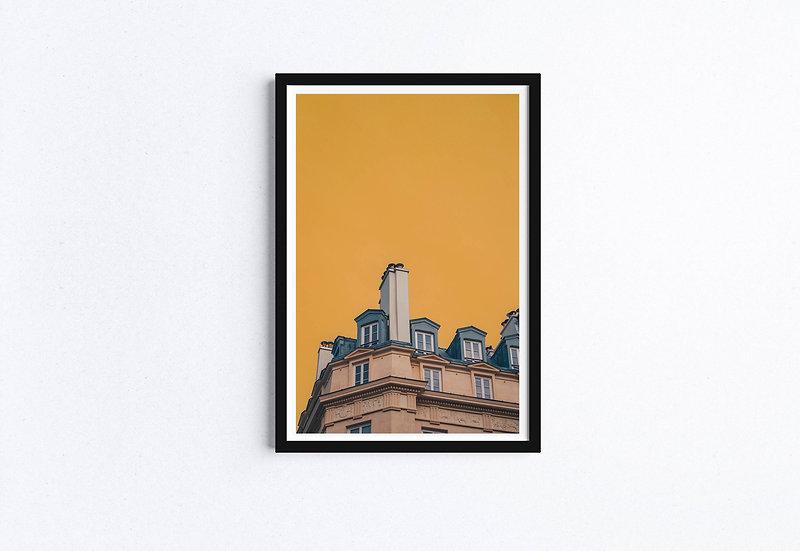 The Roof of Paris Fine Art Print