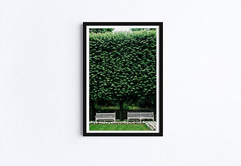 English Garden Fine Art Print