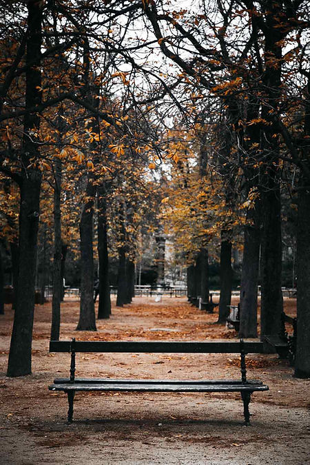paris-photography-luxembourg-garden-in-autumn.
