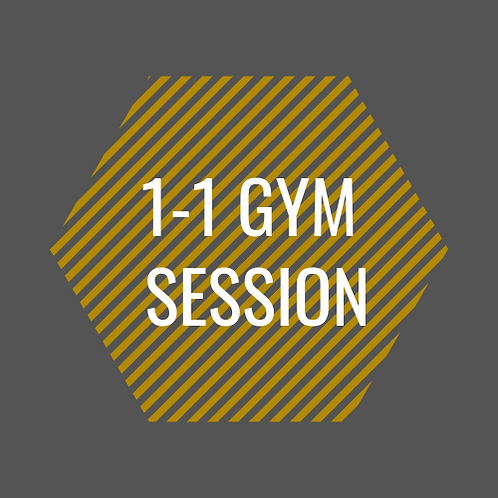 1-1 Gym Session