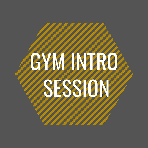 Gym Introductory Session