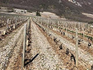 Vins de Savoie, Chignin, Jacquère, Chignin Bergeron