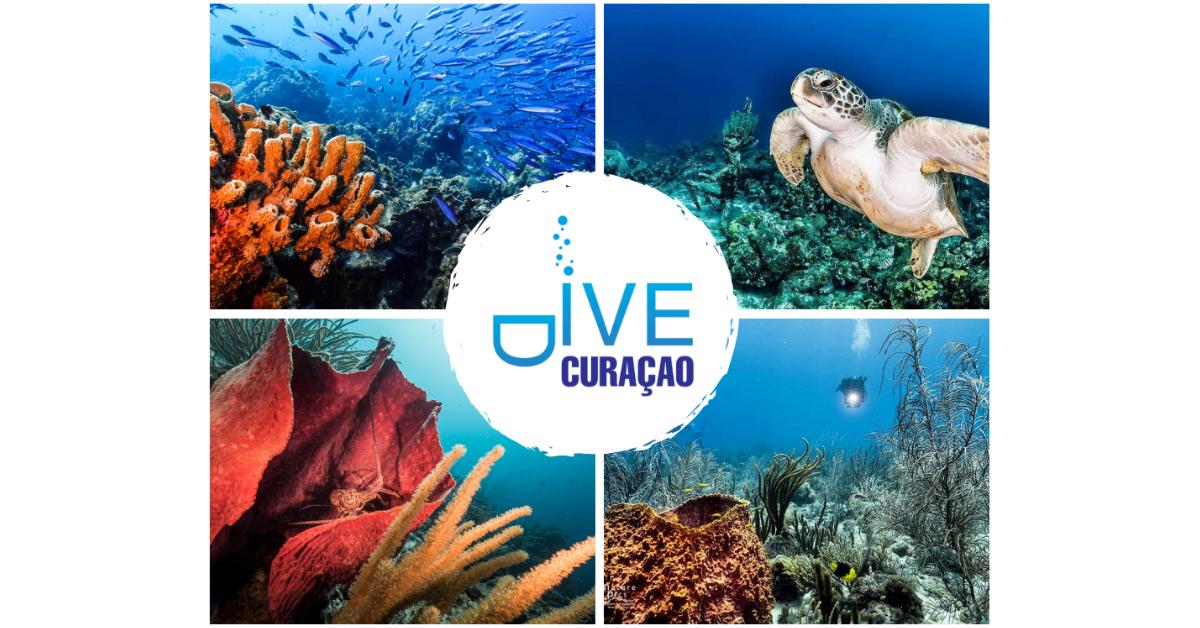 Curacao Carnival 2019 | Scuba Diving Curacao Vacations