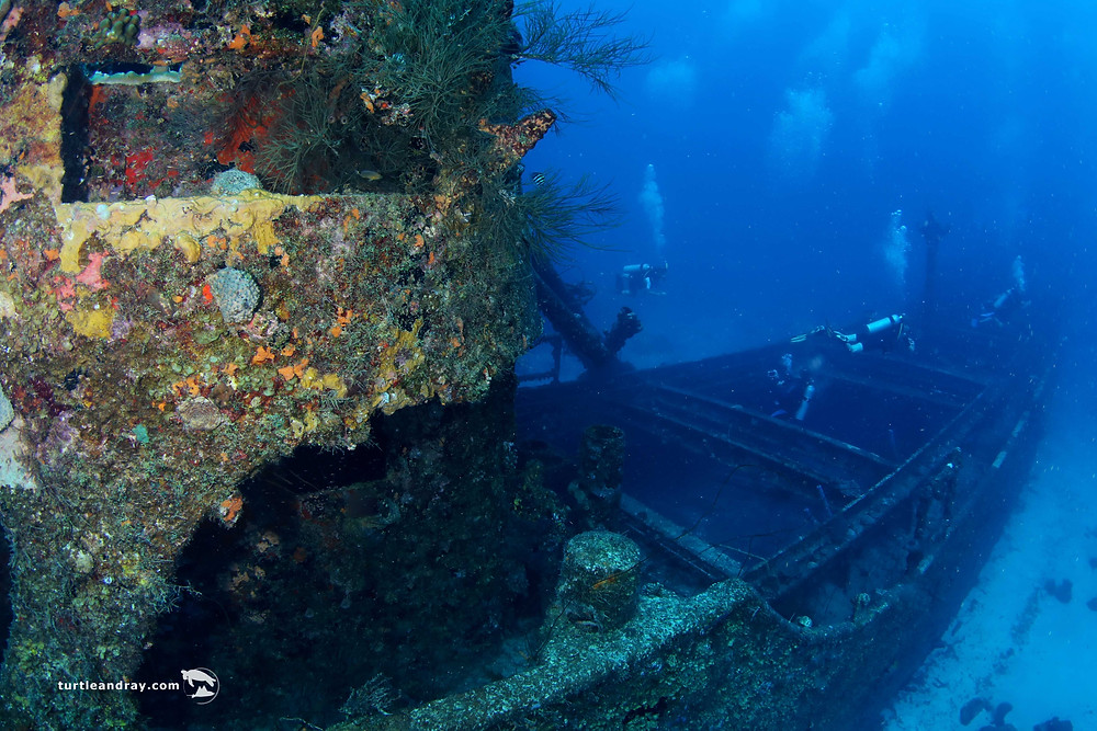 The Superior Producer is one of Curaçao's most popular dive sites, and one of the Caribbean's top wrecks. Dive in for a look at the history of this iconic shipwreck, and how it came to meet its untimely end.