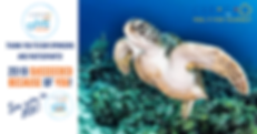 2019 Curacao Dive Festival Sponsors