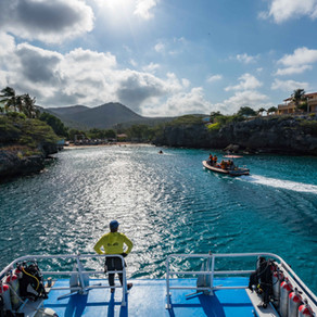 The Suit Curaçao - Swims to the Finish!