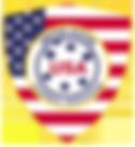 USA_Floorbal2.png