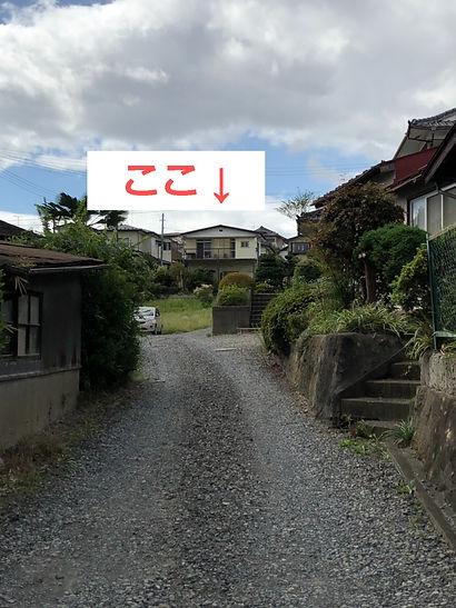 S__84606986_edited.jpg