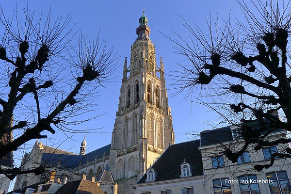 Toren in winterlicht_ foto Jan Korebrits