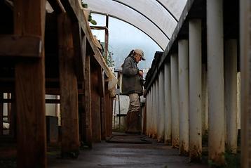 farmerworking.png