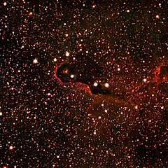 IC1396 - Nébuleuse de la Trompe d'Éléphant