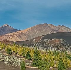 Le Pico Viejo et le Teid