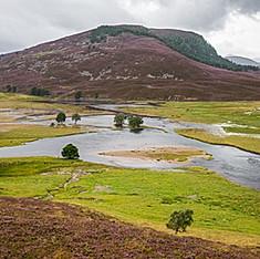 Rivière Dee, Cairngorms National Park