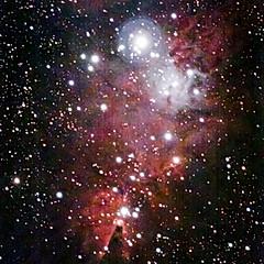 NGC2264 - Nébuleuse du Cône & amas de l'Arbre de Noël
