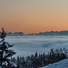 Vue des Alpes