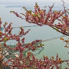 Kunming, Yunnan