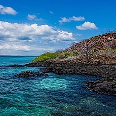 Canal Itabaca, Baltra, Galapagos