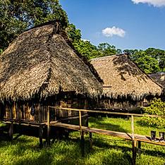 Cuyabeno, forêt amazonienne