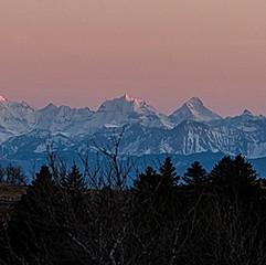 Les Alpes depuis le Creux-du-Van