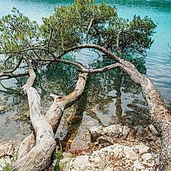 Île de Mjlet