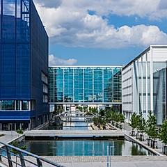 Université de Copenhague