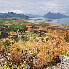 Lac de Skadar