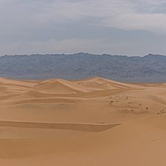 Khongor Els, désert de Gobi
