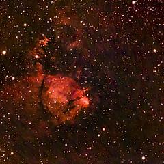 IC1795 - Nébuleuse de la Tête de poisson