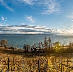 Pointe du Grain, Neuchâtel, Suisse