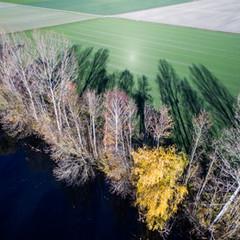 La Thielle, région des 3 lacs