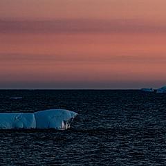 Côte ouest du Groenland