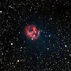 IC5146 - Nébuleuse du Cocon