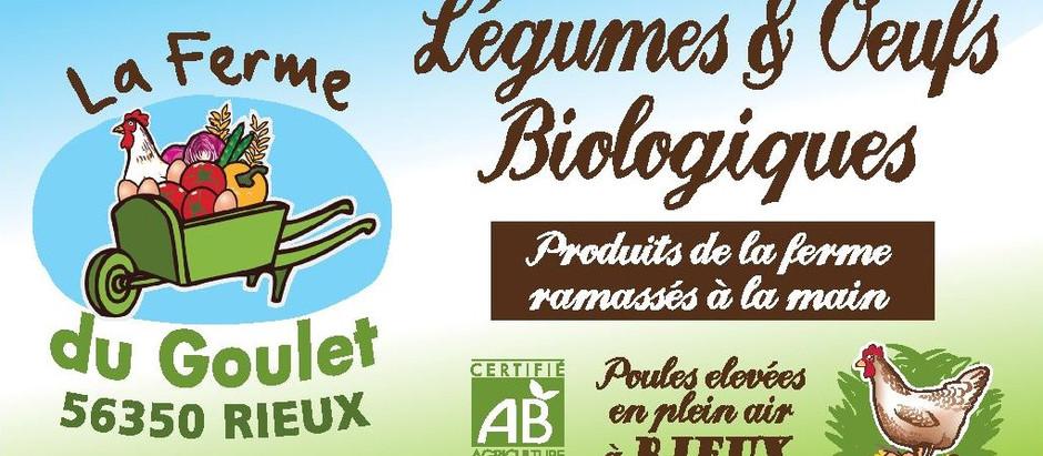 Retrouvez de délicieux œufs bio chez Culture Vrac