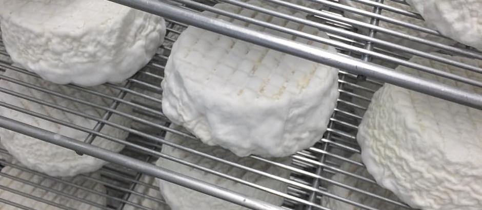 La laiterie Kerguillet