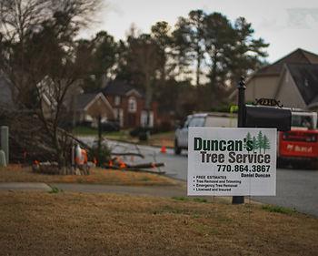 Duncan's Tree 2020 1.JPG