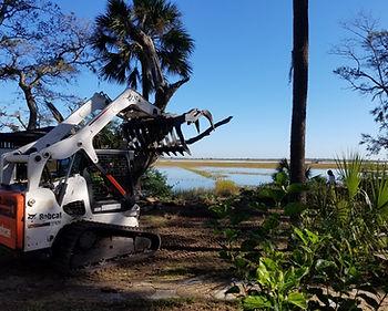 duncans tree removal 4.JPG