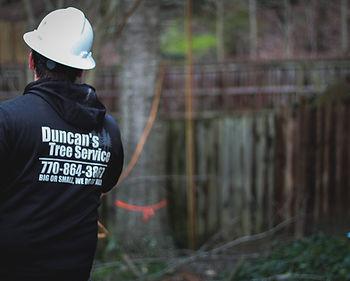 Duncan's Tree 2020 4.JPG